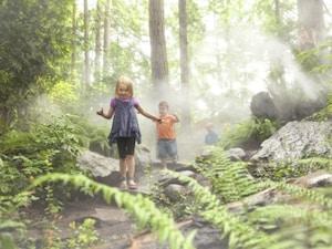 子連れカナダ旅行の基本情報