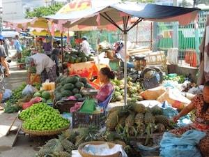 【ベトナム】チョロン 城から歩いてレベル上げ。その道中にある小さな村のよう