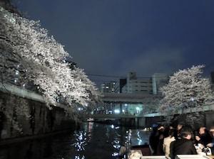 目黒川でオシャレお花見デートを!