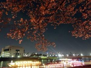 スカイツリーも見える隅田公園