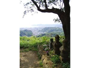 衣張山ハイキングで鎌倉の海を一望