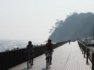 レンタルOK! 鎌倉~茅ヶ崎の海辺をサイクリング