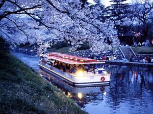 富山には「夜桜を見ながらディナーを楽しめる遊覧船」がある