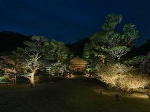 新緑の国宝白水阿弥陀堂のライトアップ