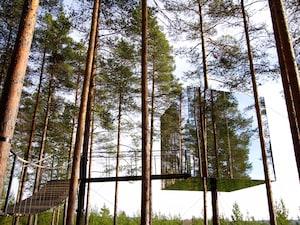 スウェーデン:大自然の中で「鳥の巣」に宿泊