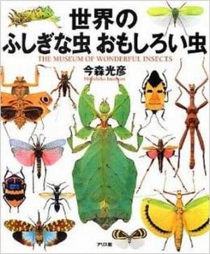 昆虫図鑑で虫の世界を満喫