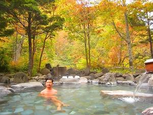 第18位 平家平温泉「こまゆみの里」(栃木県)