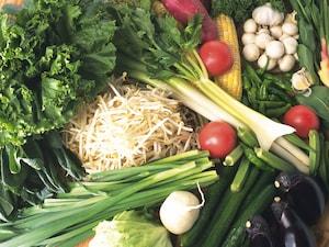 葉野菜・根菜・キノコ類の冷凍保存方法