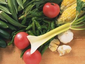 実野菜・香味野菜の冷凍保存方法