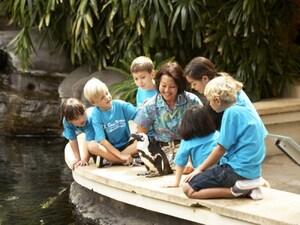 ハワイのキッズプログラム、託児、ベビーシッター