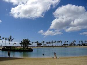 子連れハワイのファンスポット