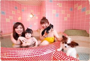 栃木県 貸切家族風呂 子供の遊び場・お出かけス …