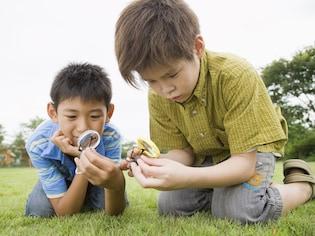 子供の興味や疑問に関するキーワードの探し方
