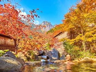 温泉旅行博士おすすめ「紅葉露天風呂」ランキング
