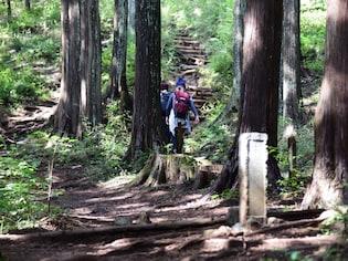 首都圏の低山ハイキングコース10選