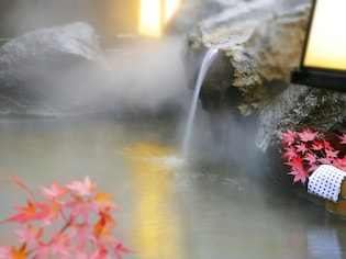 紅葉×温泉で癒され度倍増!東日本の紅葉が美しい温泉