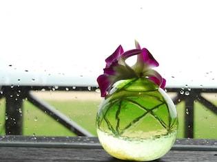 雨の沖縄の過ごし方