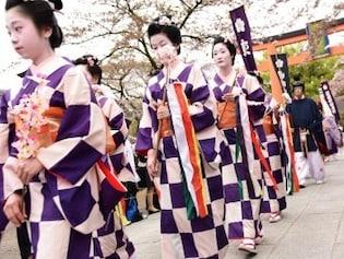 国の名勝にも指定された仁和寺の「御室桜」
