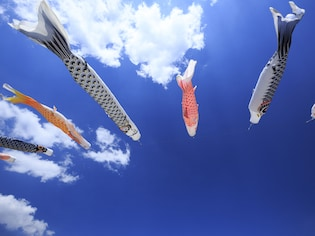 鯉は立身出世のシンボル?