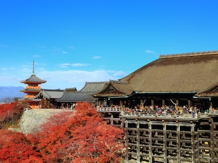 京都観光で、これぞ京都!と思える風景や体験15選
