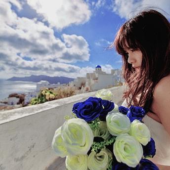 林晶莹lily