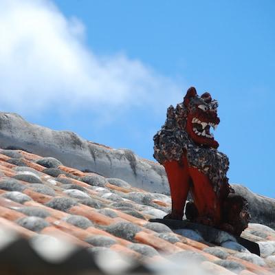 夏の沖縄を120%楽しむ!5つのおすすめ観光プラン