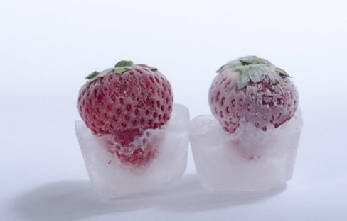 This Flash-frozen Food Thaws Like it's Fresh