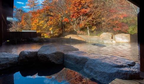 泡溫泉賞紅葉兩不誤,日本關東秋季五大絕景聖地