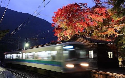 赏枫Express,京都红叶之旅导航