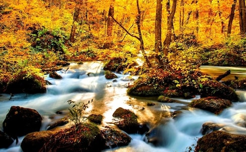 All the Best Fall Color Spots in Tohoku