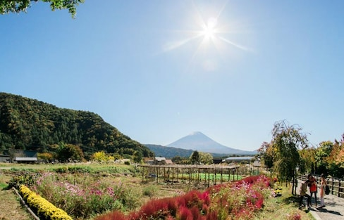 Weekend Break in Yamanashi