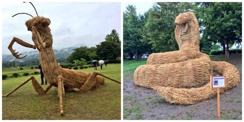 既然稻草人已经无法阻止狼群,我们就来做稻草兽吧