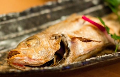 Five Fishy Favorites in Chiba