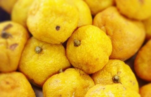 ส้มยูซุ เพื่อสุขภาพ และ ความงาม