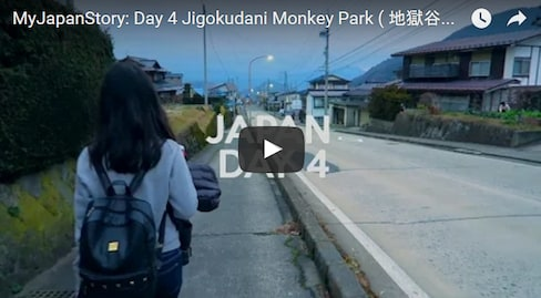 A Day at Jigokudani Monkey Park