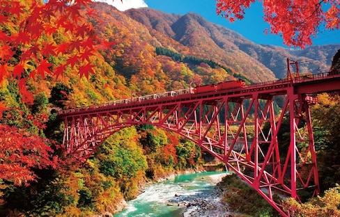 10 Amazing Photos of Japanese Trains