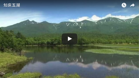 Shiretoko Five Lakes Walking Tour