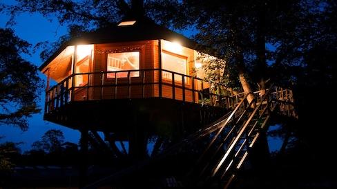 十胜的Tree House旅馆,让你徜徉在童话之中
