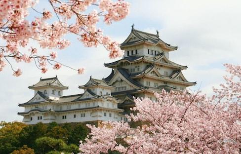 五座Instagram必PO日本城
