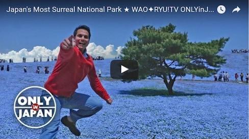 日本最超现实的国家公园