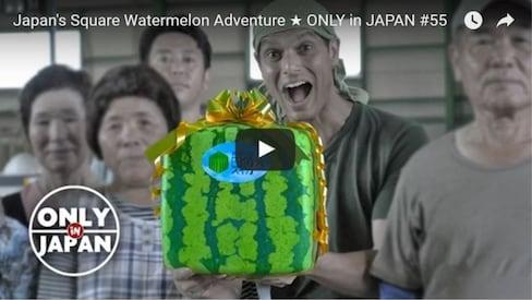 The Secret of the Square Watermelon