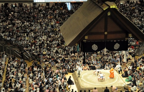 A Day at the Sumo