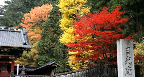 Fall, My Favorite Japanese Season