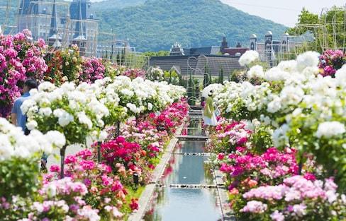 巡遊九州・佐世保  豪斯登堡不能錯過的觀光景點和美食!