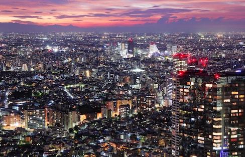 도쿄의 멋진 야경을 공짜로 보기