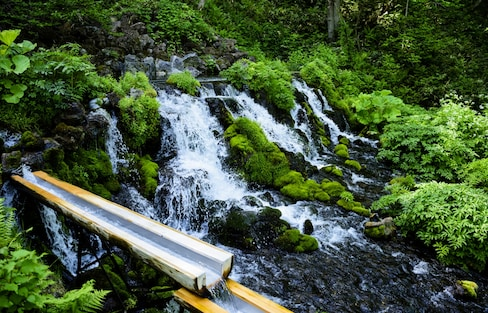 Why Water is a Big Deal in Japan