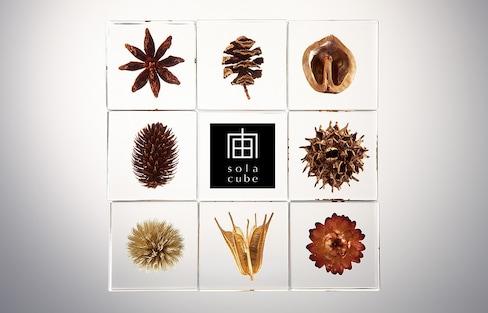 完美封存自然元素的创意树脂Sola Cube
