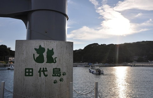 或许小城市才是你的港湾 — 日本东北石卷市游记