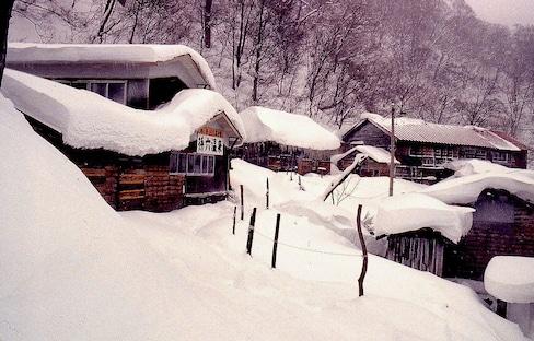 5 ออนเซ็นที่ปกคลุมไปด้วยหิมะ