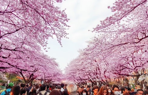 A Quick Guide to the East Tokyo Neighborhoods